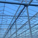 vents in glasshouse